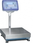Platform scale with DINI ARGEO indicator DFWL, 150 kg, 40x50