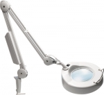 Magnifier with integrated light