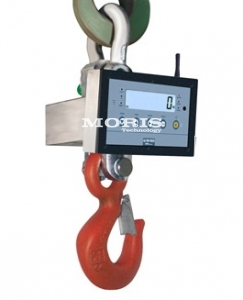 Crane scale Dini Argeo Professional  MCW300MP2-1